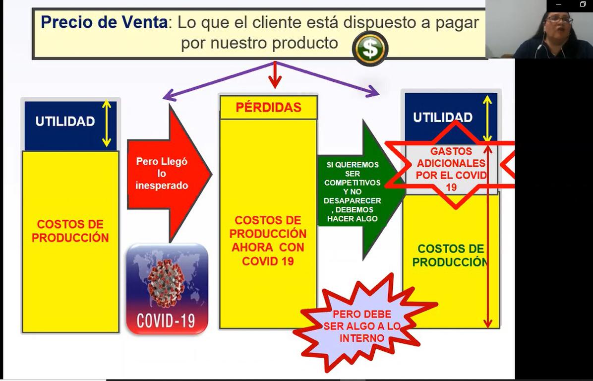 """WEBINAR: """"LA PRODUCTIVIDAD EN TIEMPOS DEL COVID-19"""""""
