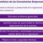 WEBINAR: «ASESORAMIENTO TÉCNICO, CLAVE EN EL MEJORAMIENTO CONTINUO DE LAS EMPRESAS»